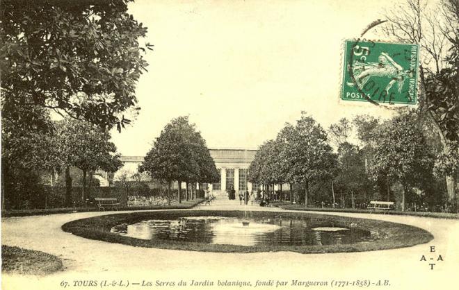 1392 396 carte postale botanique