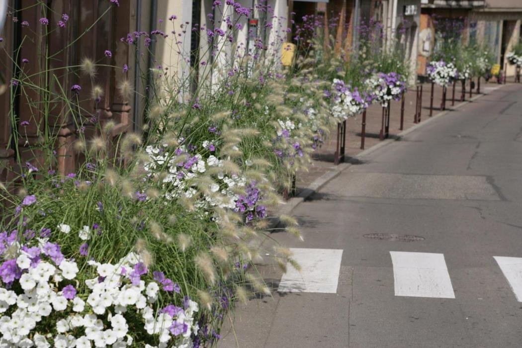 16 rue du marechal foch