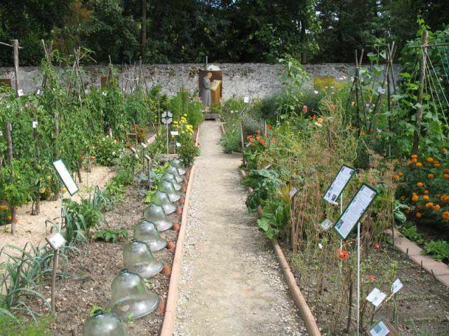 20091221 151444 jardin potager caillebotte