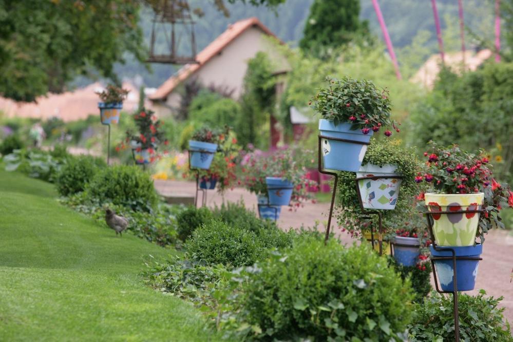 27 jardin pour la paix collection de fushias