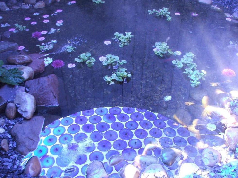 30 jardin pour la paix detail jardin meteorique 1