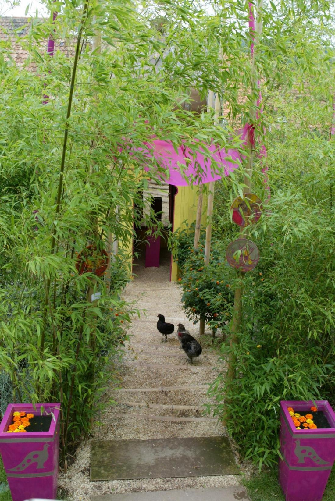 31 jardin pour la paix reves d indes