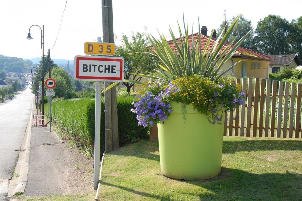 Bitche 2
