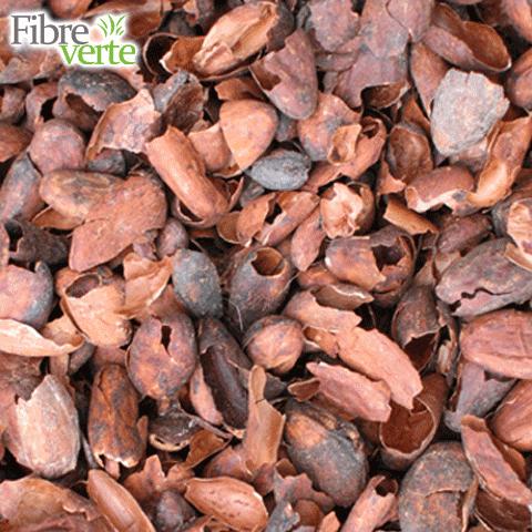 coque-de-cacao-decocao-1276882.png