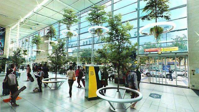 Des arbres en levitation dans la gare ouest france