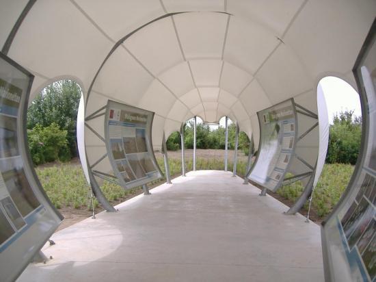 ef2006-531.jpg