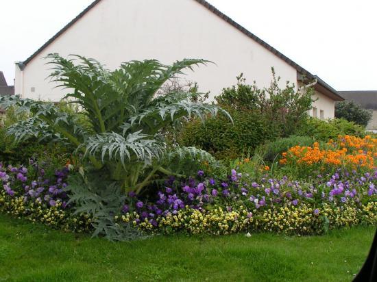 Essais fleurs 2008 474
