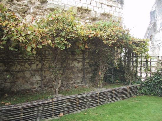 jardins-medievaux-006.jpg