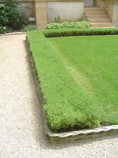 jardins-medievaux-025.jpg