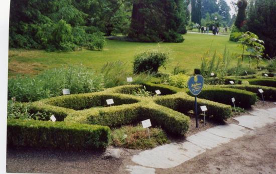 jardins-medievaux-071.jpg