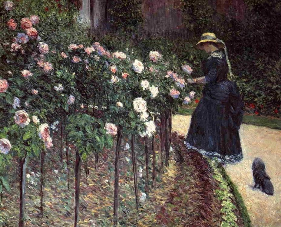 Roses au jardin petit gennevilliers